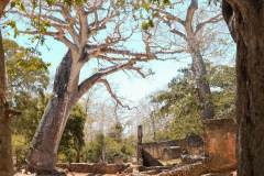 fotoserie-kenia-reisefotografie-131-von-161