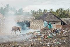 Fotoserie Kenia in Lamu