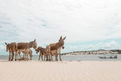 fotoserie-kenia-reisefotografie-140-von-161