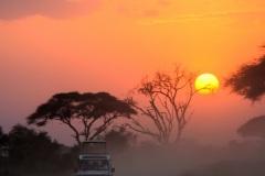 Fotoserie Kenia Safari