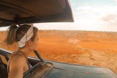 Fotoserie Kenia Löwe in Sicht