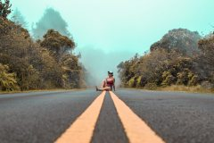 Fotoserie Hawaii Straßenshooting