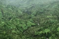 Fotoserie Hawaii grünes Tal